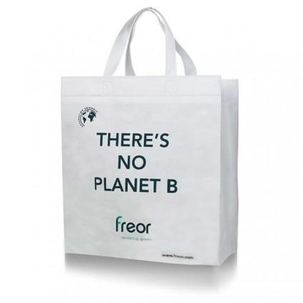Polypropylene bag (ECO)
